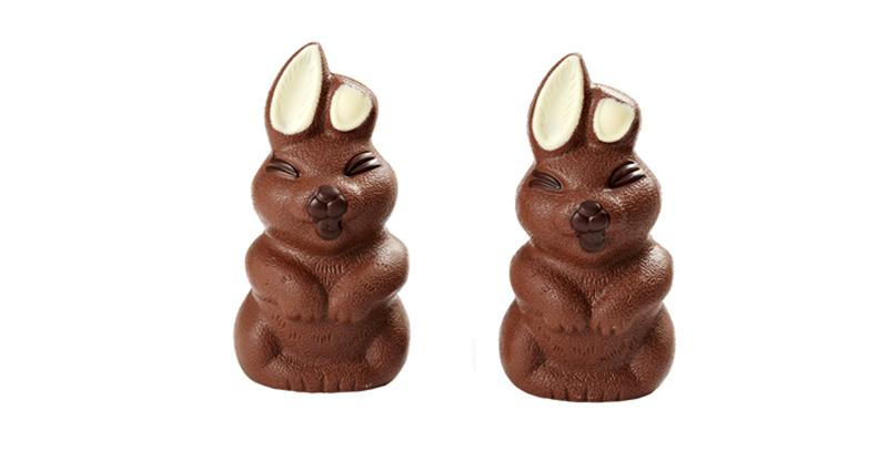 Blink of an eye the rabbit