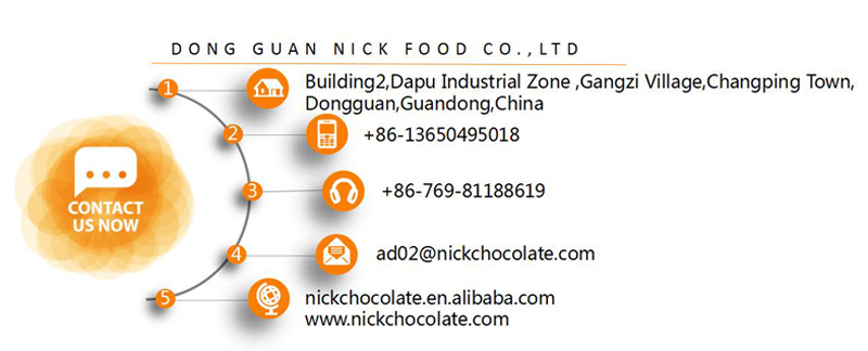 hazelnut chocolate bean wholesale