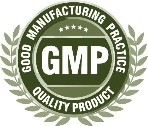GMP - bună practică de fabricație
