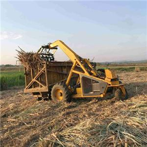 BELL 125A Three Wheels Sugarcane Loader