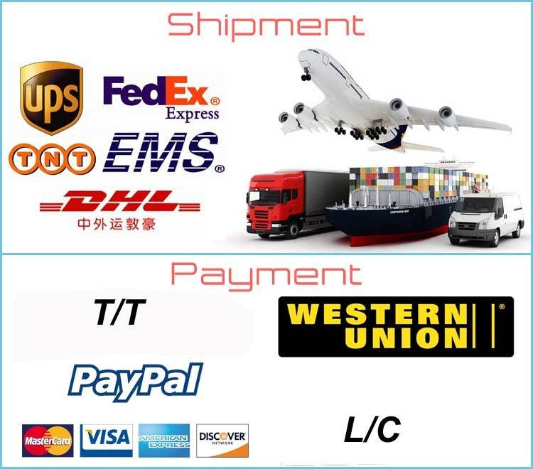 Shipment and payment