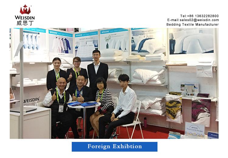 Foreign Exhibition Singapore Expo