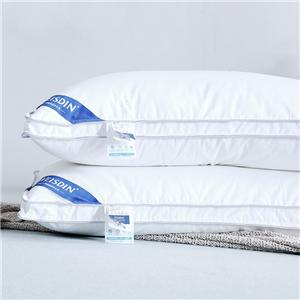 Anti Allergy Pillow