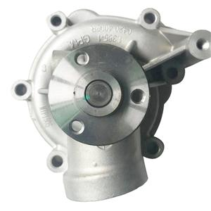 Deutz /1307011-56D pump(small)