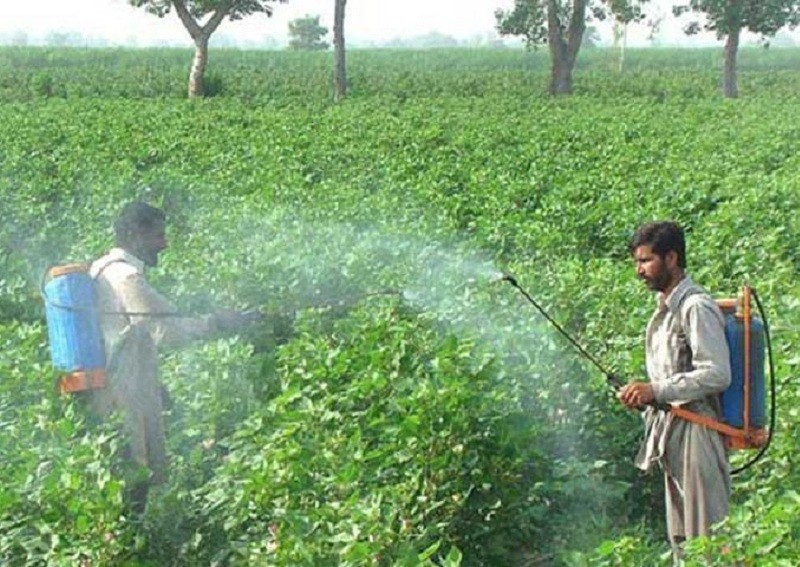 Seesa levert betere apparatuur voor de landbouwproductie