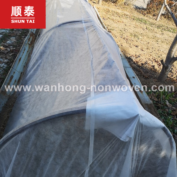 White Agriculture Plant Control Cover Pp Non Woven Fabric Manufacturers, White Agriculture Plant Control Cover Pp Non Woven Fabric Factory, Supply White Agriculture Plant Control Cover Pp Non Woven Fabric