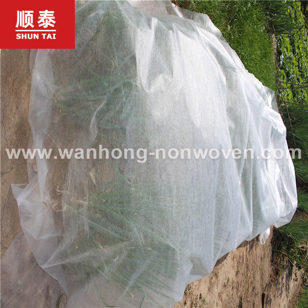 High Quality Colourful Plant Cover Agriculture Non Woven Fabric Manufacturers, High Quality Colourful Plant Cover Agriculture Non Woven Fabric Factory, Supply High Quality Colourful Plant Cover Agriculture Non Woven Fabric