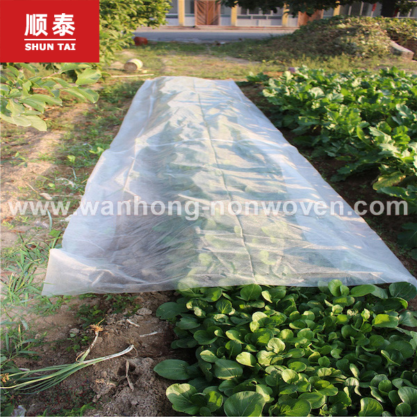 China Factory Plants Cover Material Eco-friendly PP Non Woven Fabric Manufacturers, China Factory Plants Cover Material Eco-friendly PP Non Woven Fabric Factory, Supply China Factory Plants Cover Material Eco-friendly PP Non Woven Fabric