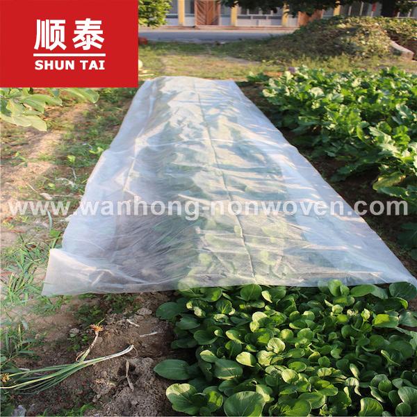 Polypropylene Non Woven Fabric Rolls