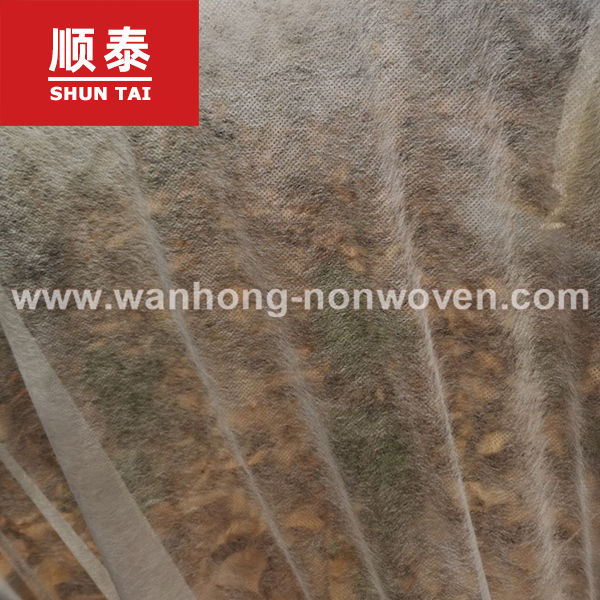 17gsm 100% PP Nonwoven Fabric Frost Protection For Plants Manufacturers, 17gsm 100% PP Nonwoven Fabric Frost Protection For Plants Factory, Supply 17gsm 100% PP Nonwoven Fabric Frost Protection For Plants