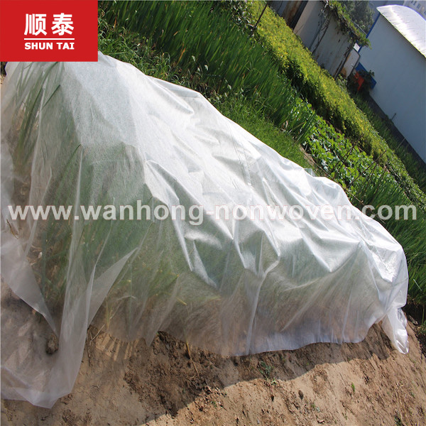 17gsm-90gsm Agriculture Fabric Or Agriculture Nonwoven Fabric Or Material For Agriculture Manufacturers, 17gsm-90gsm Agriculture Fabric Or Agriculture Nonwoven Fabric Or Material For Agriculture Factory, Supply 17gsm-90gsm Agriculture Fabric Or Agriculture Nonwoven Fabric Or Material For Agriculture
