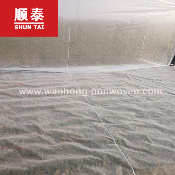 20m Super Wide Greenhouse 30g Agriculture Nonwoven Fabric Non Woven Fabric In China