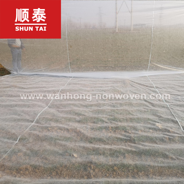 20m Super Wide Greenhouse 30g Agriculture Nonwoven Fabric Non Woven Fabric In China Manufacturers, 20m Super Wide Greenhouse 30g Agriculture Nonwoven Fabric Non Woven Fabric In China Factory, Supply 20m Super Wide Greenhouse 30g Agriculture Nonwoven Fabric Non Woven Fabric In China