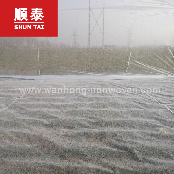 7.6 M Width 17gsm Anti-uv Agriculture Pp Spunbond Nonwoven Weed Control Ground Cover Fabric Manufacturers, 7.6 M Width 17gsm Anti-uv Agriculture Pp Spunbond Nonwoven Weed Control Ground Cover Fabric Factory, Supply 7.6 M Width 17gsm Anti-uv Agriculture Pp Spunbond Nonwoven Weed Control Ground Cover Fabric