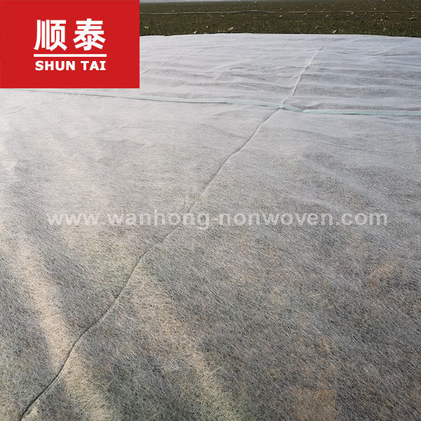 7.6 M Width Anti-uv Agriculture Pp Spunbond Nonwoven Weed Control Ground Cover Fabric Manufacturers, 7.6 M Width Anti-uv Agriculture Pp Spunbond Nonwoven Weed Control Ground Cover Fabric Factory, Supply 7.6 M Width Anti-uv Agriculture Pp Spunbond Nonwoven Weed Control Ground Cover Fabric