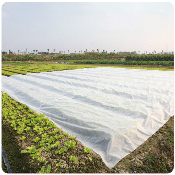 nonwoven fabric plant cover for garden