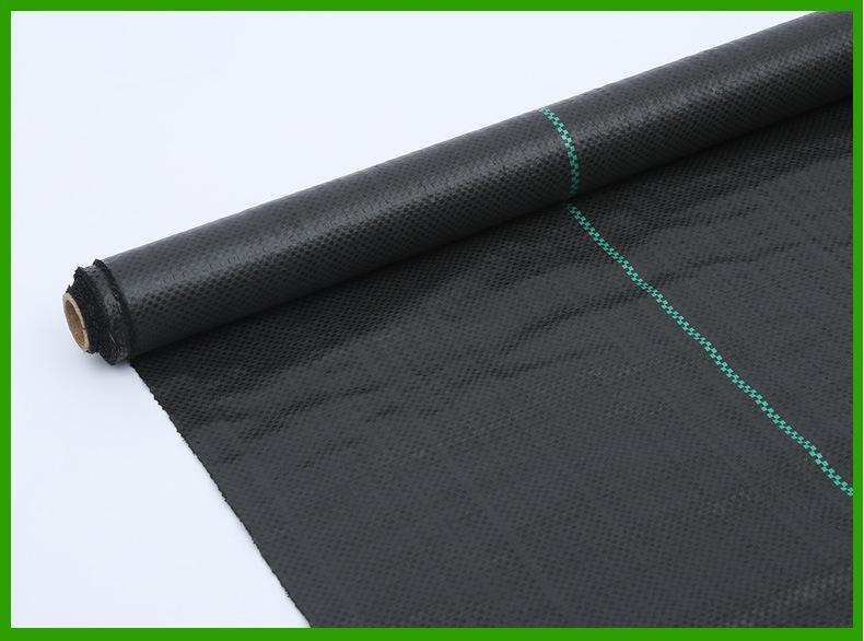 wholesale weed control roll