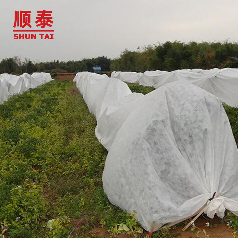 High Quality 100% Pp Non Woven Fabric/garden Plant Cover Fabric Manufacturers, High Quality 100% Pp Non Woven Fabric/garden Plant Cover Fabric Factory, Supply High Quality 100% Pp Non Woven Fabric/garden Plant Cover Fabric