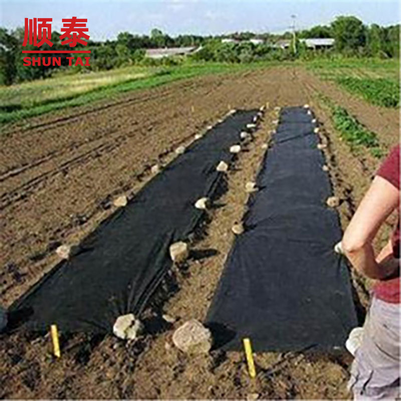 Artificial Ground Cover/weed Control Fabric/ground Cover Net Manufacturers, Artificial Ground Cover/weed Control Fabric/ground Cover Net Factory, Supply Artificial Ground Cover/weed Control Fabric/ground Cover Net
