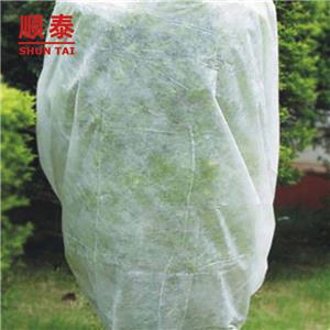 17gsm-90gsm Agriculture Fabric Or Agriculture Nonwoven Fabric Or Material For Agriculture