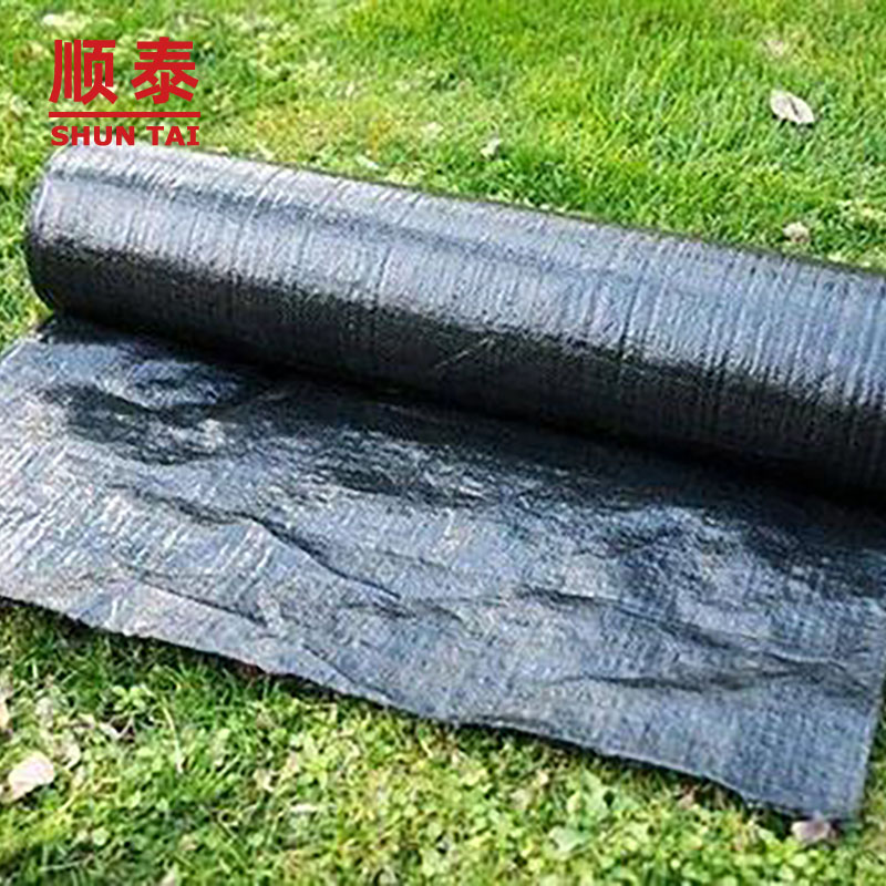 Black / Green PP Woven Fabric Agricultural Weed Control Mat For Weed Barrier Manufacturers, Black / Green PP Woven Fabric Agricultural Weed Control Mat For Weed Barrier Factory, Supply Black / Green PP Woven Fabric Agricultural Weed Control Mat For Weed Barrier