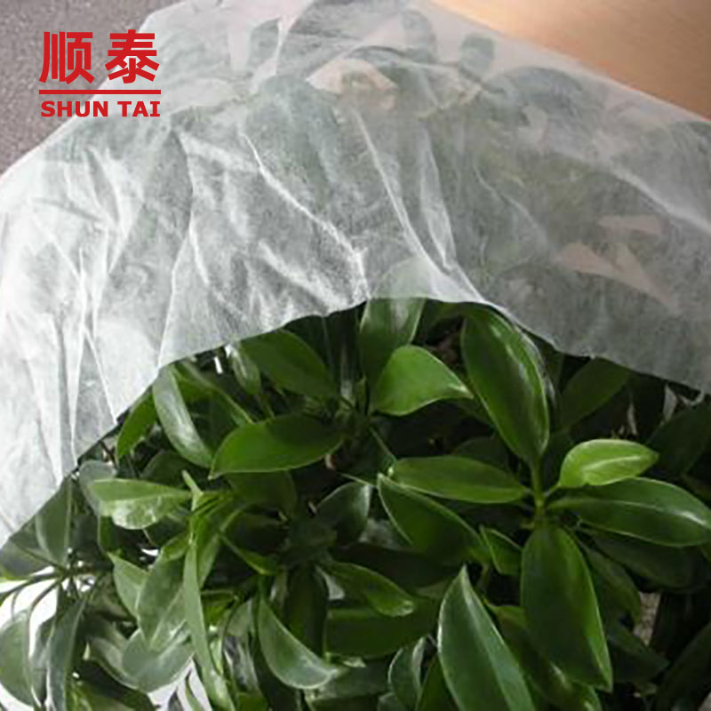 sales ground cover cloth