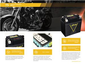 Lithium Motorcycle Battery Harley OEM