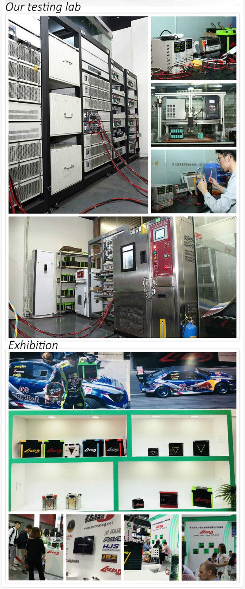 LiFePO4 Car Audio Lithium Battery OEM