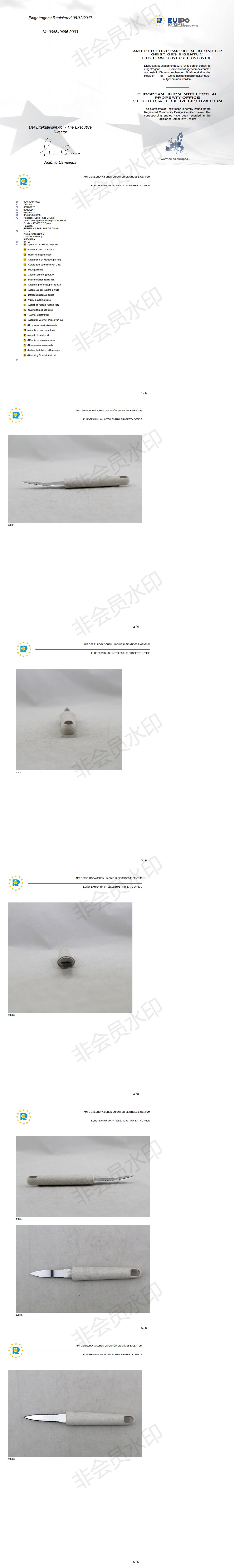 Патент ЕС 004540466-0003