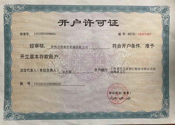 Bank license of Beta CNC Router Machine