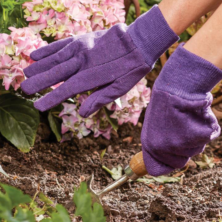 lavender glove